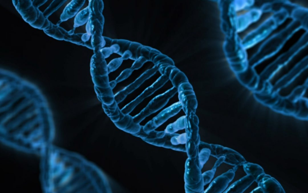 An Easy Way to Beat Stress that Changes Your DNA